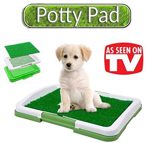 5 opinioni per L'originale Puppy Potty Pad! Lettiera in erba sintetica per cuccioli di cane-