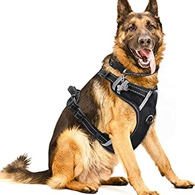 Winsee Dog Harness No Pull Pet Harnesses With Dog Collar Adjustable Reflective Oxford Outdoor Vest Front Back Leash Clips For Small Medium Large Extra Large Dogs Easy Control Handle For Walking Amazon Sg Home