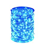 ZAECANY LED String Lights 99ft 300 LEDs Fairy String Lights for Bedroom, Patio, Indoor/Outdoor Completely Waterproof Copper Lights for Birthday, Wedding, Party Starry Lights UL Listed Blue
