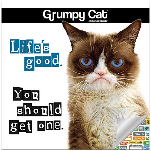 Grumpy Cat Calendar 2019 Set - Deluxe 2019 Grumpy Cat for sale  Delivered anywhere in USA