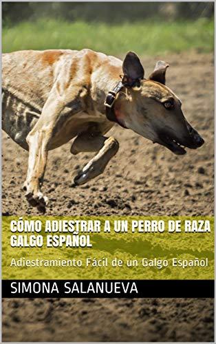 Cómo Adiestrar a Un Perro de Raza Galgo Español  : Adiestramiento Fácil de un Galgo Español por Simona Salanueva
