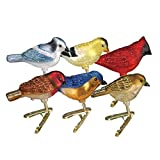 Old World Christmas Clip-on Ornament - Assorted Miniature Songbirds, Set of 6 by Old World Christmas