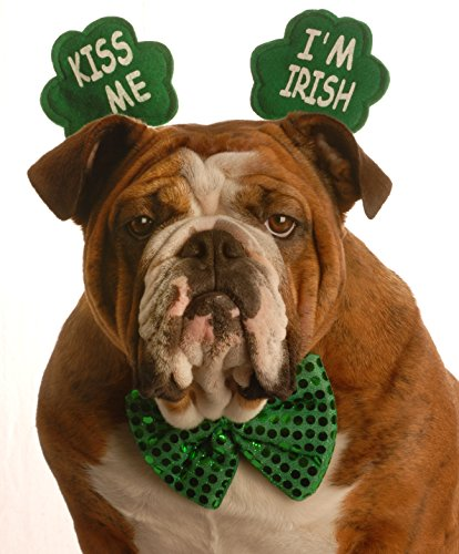 St. Patrick's Day Greeting Cards - Bow Tie Bulldog - BTB100. Business Greeting Card with a Bulldog Wearing a Bow Tie and Clover Headband. Box Set has 25 Greeting Cards and 26 Green Colored Envelopes.