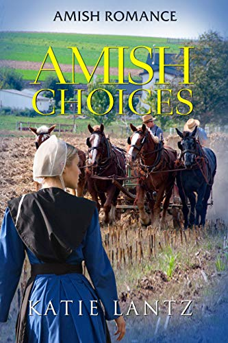Pdf Spirituality Amish Choices