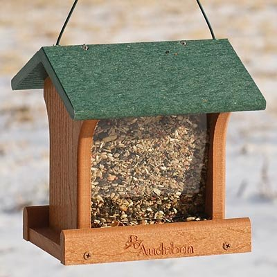 (BestNest Audubon Recycled Plastic Ranch Bird Feeder)