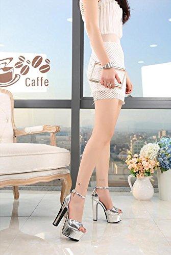 Sandali 2 Pesanti E Pattini Nightclub Femminili 14cm Nuovi Del Donne Superiori Partito Delle Con I Mzg Di Hq4nFaT