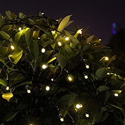 Innoo Tech Solar Outdoor String Lights 200 LED Warm White Fairy Christmas Lights 8 Mode for Wedding Party Patio Garden