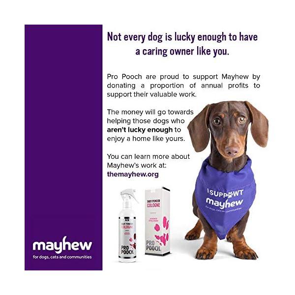Pro Pooch Dog Perfume Spray (250ml). Baby Powder Scent. 7