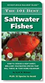 The 101 Best Saltwater Fishes (Adventurous Aquarist GuideTM)