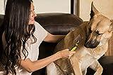 Petio Basics - Dematting Comb, Pet Grooming, Has