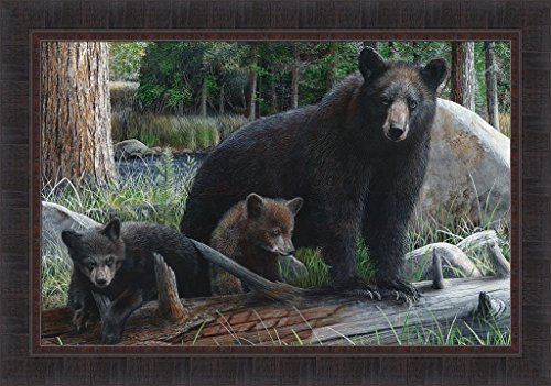 - New Discoveries by Kevin Daniel 24x34 Black Brown Bear Cubs Wildlife Framed Art Print Wall Décor Picture