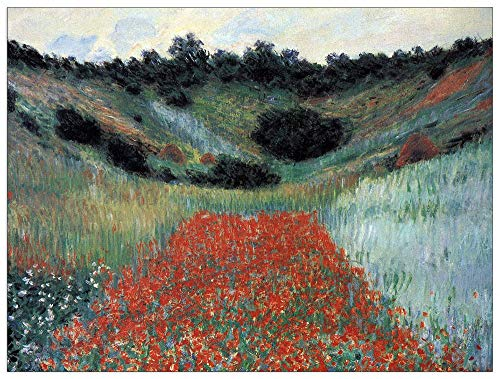 (ArtPlaza TW91882 Monet Claude-Poppy Field in Giverny Decorative Panel, 35.5x27.5 Inch, Multicolored)