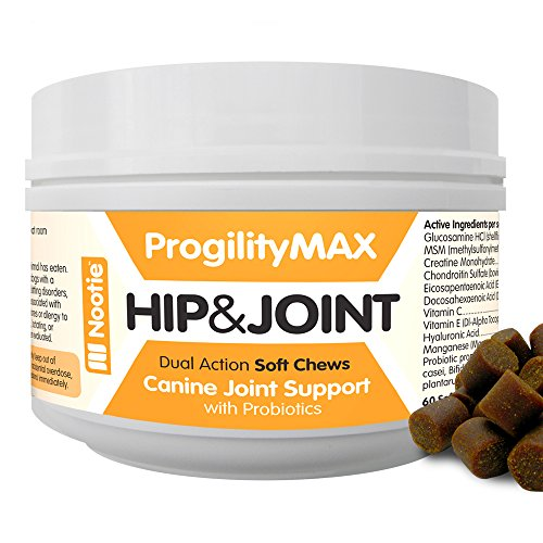 Progility Chewable Hip and Joint Supplement for Dogs - Probi