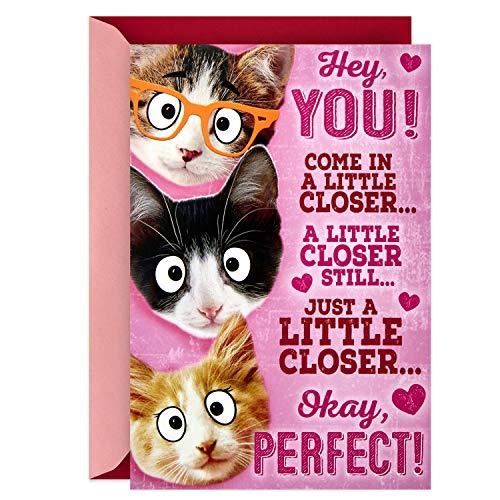 Stationery Valentine (Hallmark Pop Up Valentines Day Card (Cat Group Hug))