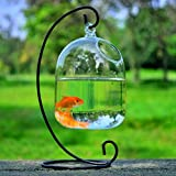 CosCosX Original Bell Shaped Hanging Glass Aquarium Fish Pot/Vase/Tank/Bowl(Black)