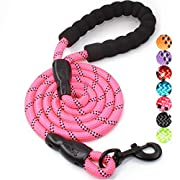 BAAPET 5 FT Strong Dog Leash with Comfortable Padded Handle and Highly Reflective Threads for Medium and Large Dogs (Hotpink)