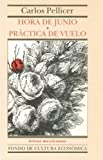 Hora de Junio/Practica de Vuelo (An Hour in June/Flight Practice), Carlos Pellicer, 9681656180