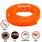 Pet Flea and Tick Collar for Cats and Kittens 33 cm - 3 Months Protection (Orange flavor)