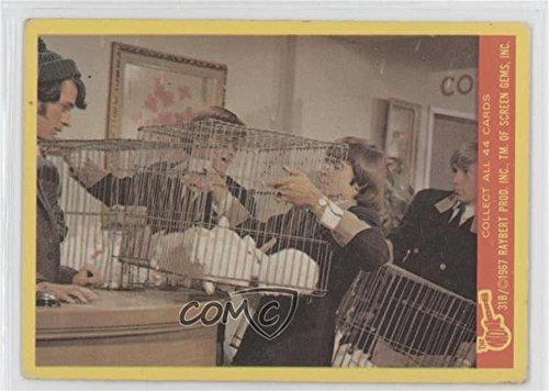 The Monkees Ungraded COMC Good to VG-EX (Trading Card) 1967 Donruss The Monkees Series B - [Base] #31B ()