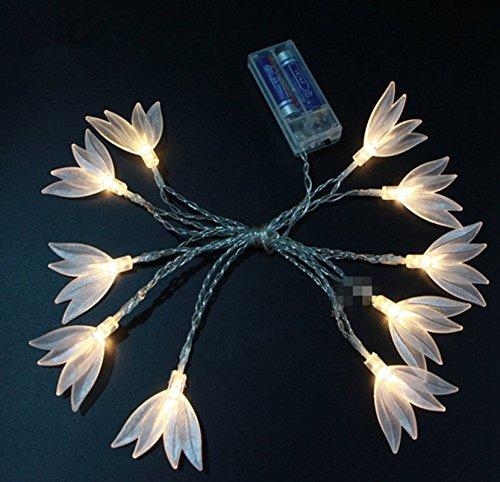 Decorative lamp garden,Transparent clover,10 led,165cm,Warm white By ADM-LC(Flower) Christmas Lights Transparent Tumblr