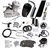 gas engine kit for bicycle - Iglobalbuy 80CC Petrol Gas Motor Bicycle Engine Complete Kit Motorized Bike 2-Stroke (silver)