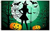 ShineSnow Funny Witch Pumpkin Halloween 4x6 Feet Flag, Polyester Ghost Broomstick Moon Bat Forest Double Stitched Brass Grommets 4 X 6 Ft Flag Outdoor Indoor Decor