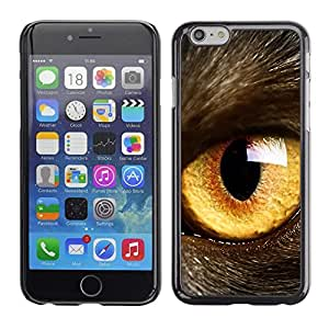 LOVE FOR Apple Iphone 6 Plus 5.5 Cat Eye Orange Yellow Fur Pet Looking Personalized Design Custom DIY Case Cover