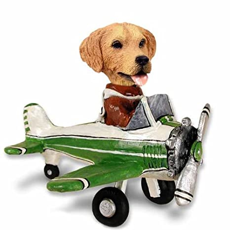 Amazon.com: dorado Retriever Avión Doogie coleccionable ...