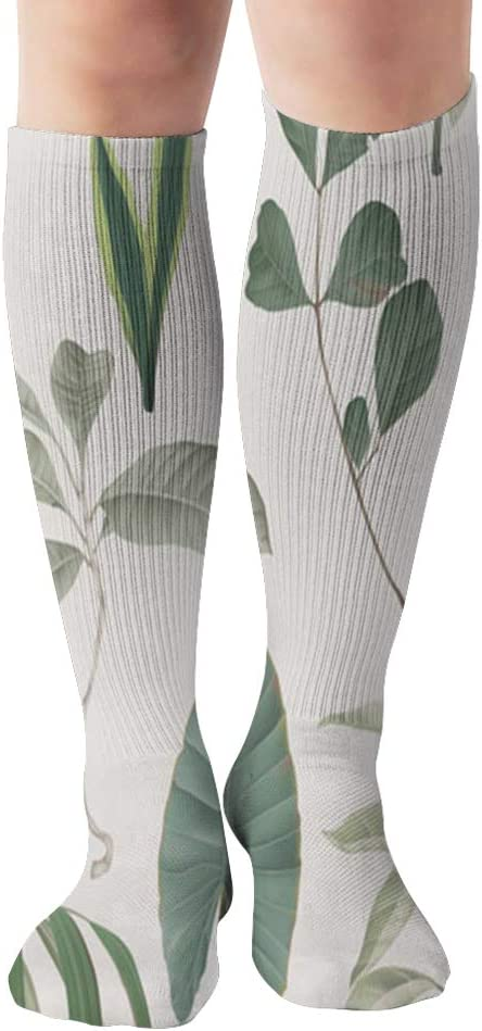 Botanical Various Green Leaves Plant Nature 19.7 Inch Compression Socks High Boots Stockings Long Hose for Yoga Walking for Women Man