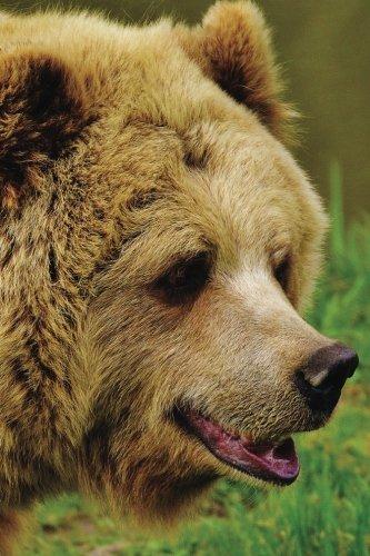Bear Any Day Planner Notebook: Blank Scheduler Organizer (Wildlife 150 Planner) (Volume 49) pdf