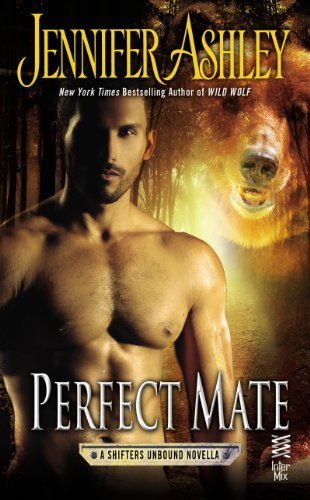 book cover of Perfect Mate