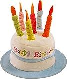 HAPPY BIRTHDAY HAT NOVELTY CAKE BIRTHDAY PRESENT GIFT IDEA BLUE by Henbrandt