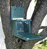 Songbird Essentials SERUB1038 Recycled Plastic Squirrels Only Feeder (Set of 1)