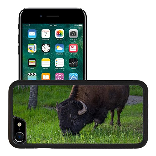 Luxlady Premium Apple iPhone 7 Aluminum Backplate Bumper Snap Case iPhone7 IMAGE ID: 30387747 large map bison standing alone on green grass in South - Park Store Map South