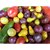Organic Heirloom Cherry Tomato Collection. Plant a Rainbow in your garden 50 Seeds Sample Pack