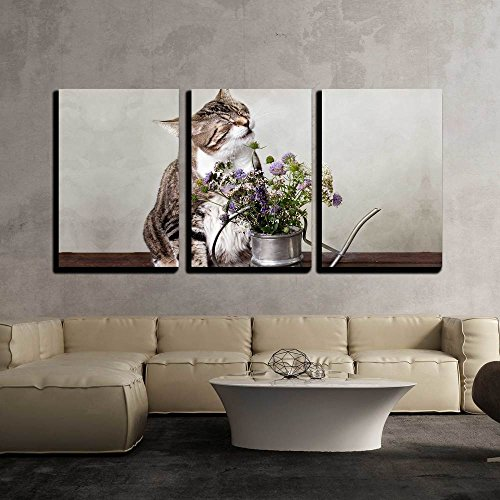 wall26 - 3 Piece Canvas Wall Art - Cat with Flowers in Old Decorative Watering Can - Modern Home Decor Stretched and Framed Ready to Hang - 16