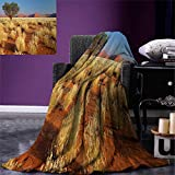 smallbeefly Landscape Digital Printing Blanket Acacia Tree Desert Sossusvlei Namibia Southern Africa Photo Summer Quilt Comforter 80''x60'' Marigold Sky Blue Green