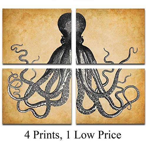 Octopus Art Prints - Set of Four Photos (8x10) Unframed - Makes a Great Gift Under $20 for Beach House Decor