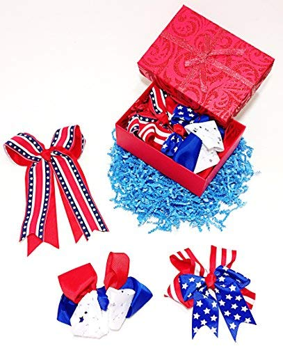 All American Patriotic Red White & Blue Flag Hair Clip Barrette Bows for Girls (R)
