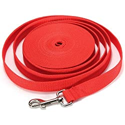 40FT/50FT/66FT Extra Long Puppy Pet Training Obedience Retractable Lead Leash Recall 3 Color Choice (66Ft, Red)