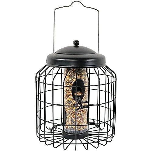 (Sunnydaze Outdoor Hanging Wild Bird Feeder, Steel Wire Caged, 4-Peg, 12-Inch, Black)