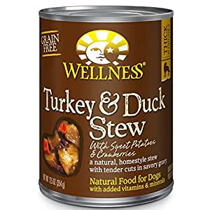 Wellness Thick & Chunky Natural Wet Grain Free Canned Dog Food, Turkey & Duck Stew, 12.5-Ounce Can (Pack of 12)