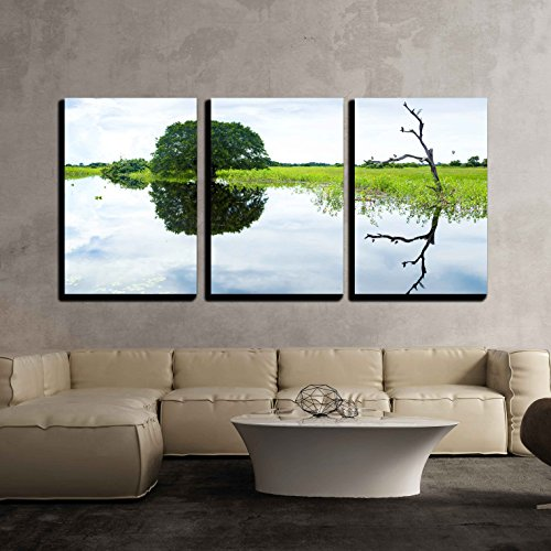 Wetlands in Pantanal Brazil x3 Panels
