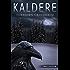 Kaldere (Stein Time Book 1) (Norwegian_bokmal Edition)