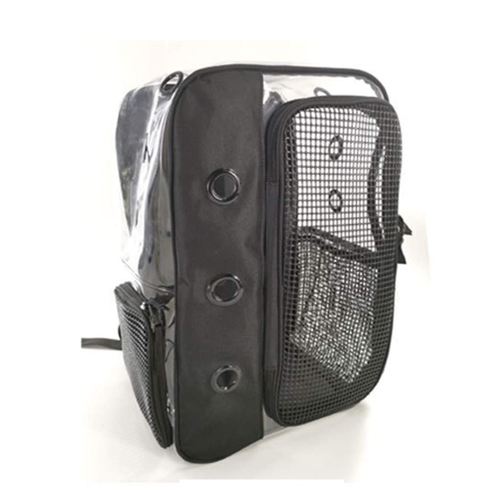 ForHe Pet Clear Backpack Carrier, Mesh Breathable Foldable Backpacks for Puppy Dog Cat Travel, Multi Colors Optional