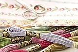 DMC 117-920 6 Strand Embroidery Cotton