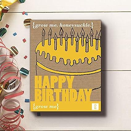 Amazon.com: Gift Republic crecer Me Feliz cumpleaños caja de ...