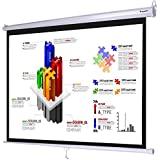 """Instahibit 120"""" 4:3 Manual Pull Down Projector Screen Office Projection 96x72"""