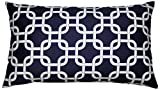 JinStyles Trellis Chain Cotton Canvas Lumbar Decorative Throw Pillow Cover (White and Navy Blue, 12 x 20)