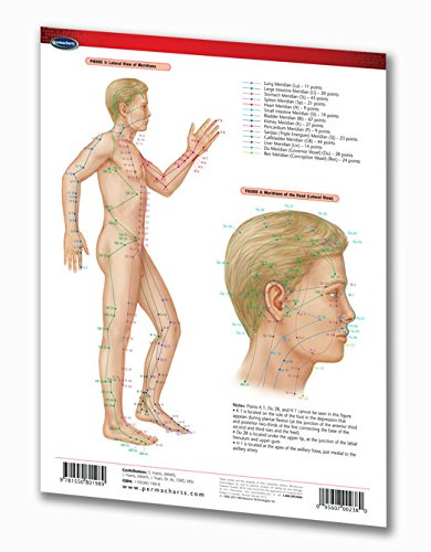 Acupuncture Points Chart Guide - Medical Quick Reference Guide by Permacharts